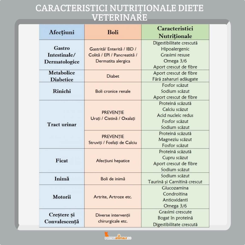 infografic diete veterinare