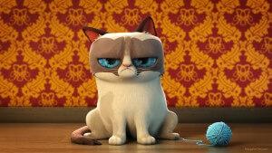 Funny-grumpy-cat-wallpapers-7