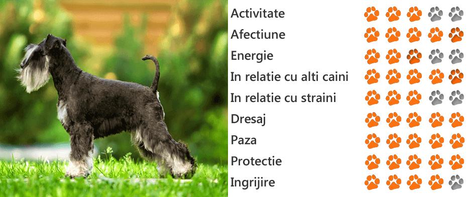 numele de boală pitică pitică)